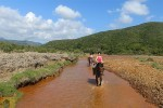 escursioni-cavallo1b