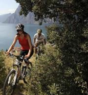 quinto-moro-mountain-bike